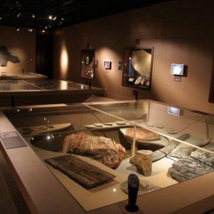 Muséum-d'Histoire-Naturelle-de-Grenoble-38-11